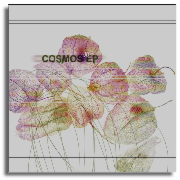 cosmos-ep.png